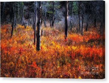 Swamp Music - A Late Autumn Impressionist Scenic Canvas Print