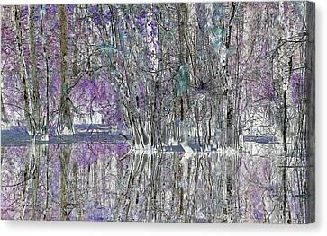 Swampscape Canvas Print