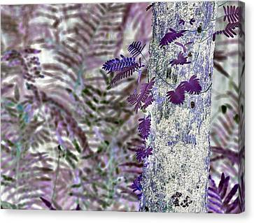 Ferns Of A Different Color Canvas Print