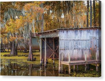Swampy Dock  Canvas Print