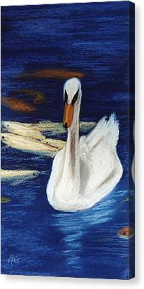 Canvas Print featuring the pastel Swan And Koi by Jan Amiss