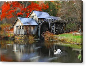 Swan At Mabry Mill Canvas Print by Mary Timman
