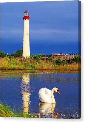 Swan At The Lighthouse Canvas Print by Nick Zelinsky
