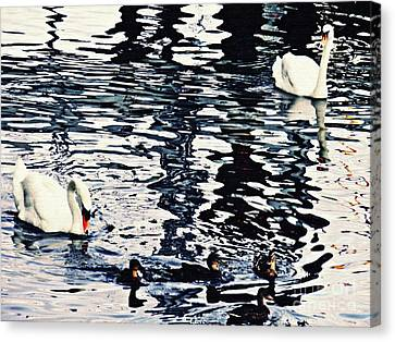 Canvas Print featuring the photograph Swan Family On The Rhine by Sarah Loft