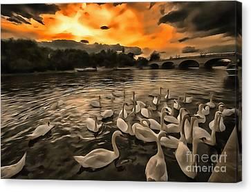 Swan Gloaming Kingston U K Canvas Print by Jack Torcello