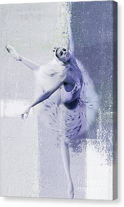 Swan Lake 01 Canvas Print by Gull G