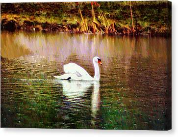 Geese Canvas Print - Swan Lake by Bill Cannon