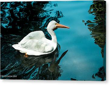 Swan Lake Canvas Print by Debbie Karnes