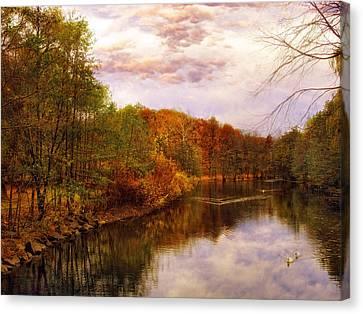 Swans... Canvas Print - Swan Lake by Jessica Jenney