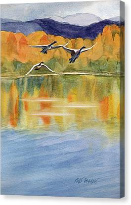 Rare Bird Canvas Print - Swan Lake Revisited by Kris Parins