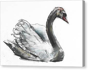 Swan Canvas Print by Mark Adlington