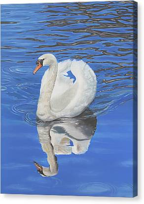 Canvas Print featuring the painting Swan Reflection by Elizabeth Lock