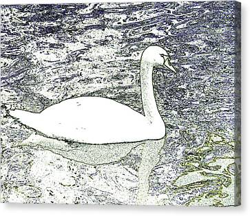 Canvas Print featuring the photograph Swan Sketch by Manuela Constantin