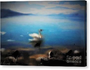Swan Tranquility Canvas Print by Alex Thomas