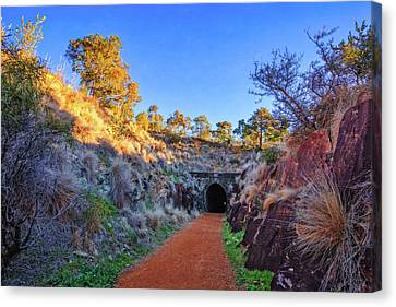 Swan View Railway Tunnel Canvas Print