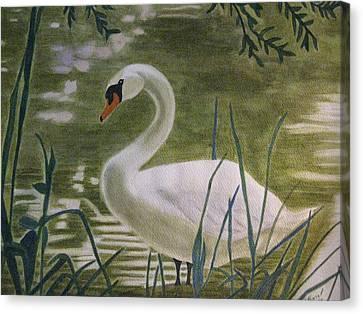 Swanlike Neck Canvas Print by Barbara Pascal