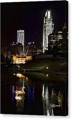 Swans At Night Canvas Print