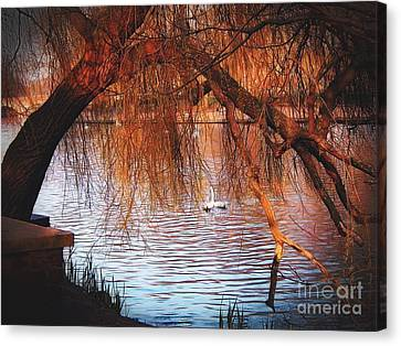 Canvas Print featuring the photograph Swans On The Avon by Sue Melvin