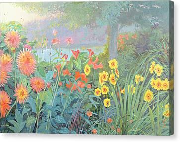 Swans Canvas Print by William Ireland
