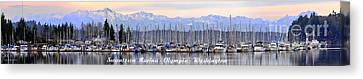 Swantown Marina Olympia Wa Canvas Print by Larry Keahey