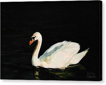Swany River Canvas Print