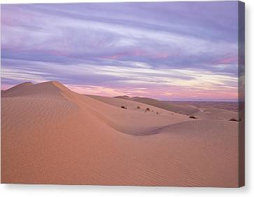 Canvas Print featuring the photograph Sweeping Dunes At Sunset by Patricia Davidson