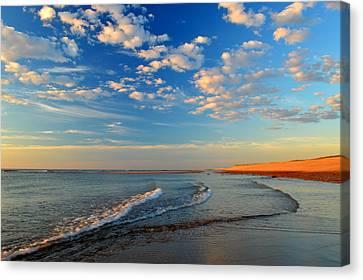 Sweeping Ocean View Canvas Print by Dianne Cowen