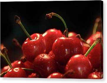 Sweet Cherries Canvas Print by Lori Deiter
