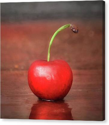 Sweet Cherry Canvas Print by Lori Deiter