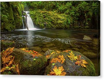 Canvas Print featuring the photograph Sweet Creek Falls In Autumn by Patricia Davidson