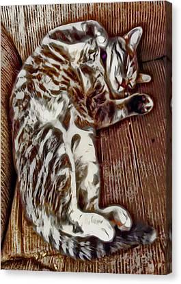 Sweet Dreams Canvas Print by David G Paul