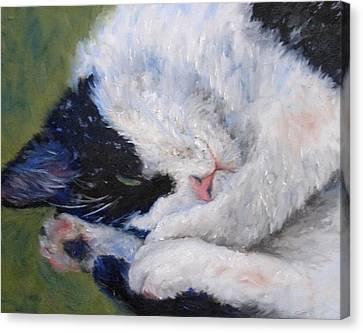 Sweet Dreams Canvas Print by Debra Mickelson