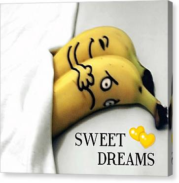 Sweet Dreams Canvas Print by Sheila Mcdonald