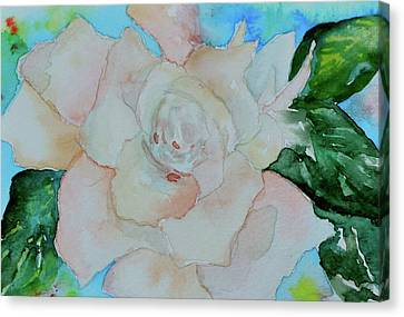 Canvas Print featuring the painting Sweet Gardenia by Beverley Harper Tinsley