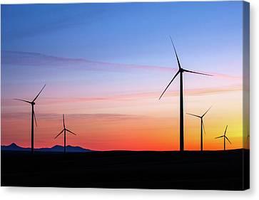 Sweet Grass Energy Canvas Print by Todd Klassy
