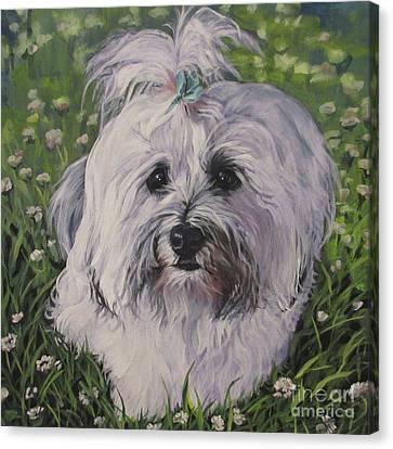 Sweet Havanese Dog Canvas Print by Lee Ann Shepard