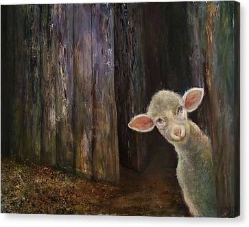 Sweet Lamb Canvas Print