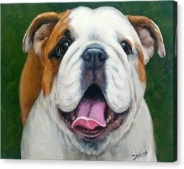 Sweet Little English Bulldog Canvas Print by Dottie Dracos