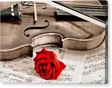 Sweet Music Canvas Print