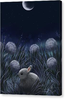 Close Up Canvas Print - Sweet Night by Veronica Minozzi