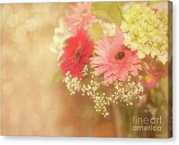 Sweet Nothings Canvas Print by Beve Brown-Clark Photography