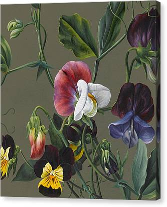 Decorative Canvas Print - Sweet Peas And Violas by Louise D'Orleans