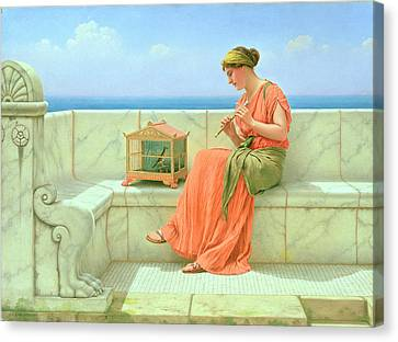 Canary Canvas Print - Sweet Sounds by John William Godward