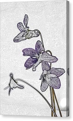 Sweet Violets 2 Canvas Print