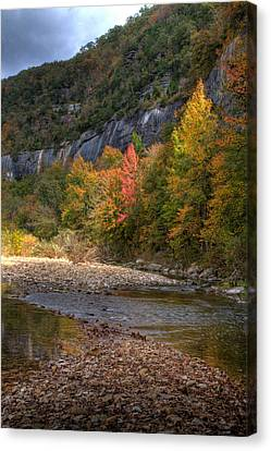 Canvas Print featuring the photograph Sweetgums At Steel Creek  by Michael Dougherty