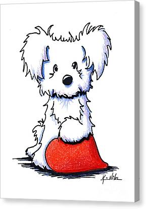 White Maltese Canvas Print - Sweetheart Puppy by Kim Niles