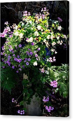 Blue Begonia Canvas Print - Sweetness In My Garden by Hanne Lore Koehler