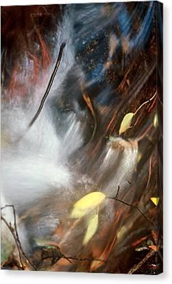 Swept Away Canvas Print by Lynard Stroud