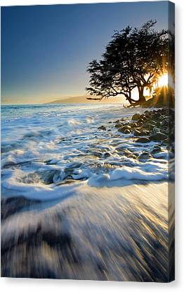 Swept Out To Sea Canvas Print by Mike  Dawson