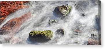 Swirl Canvas Print by Russ Brown
